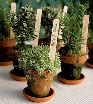 Bravo! Weddings - Wedding Favors- Cheap, Chic & Creative