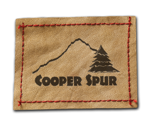Cooper Spur Mountain Resort