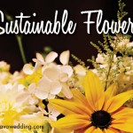sustainable flowers